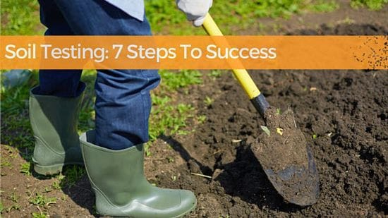 Soil Testing: 7 Steps to Success